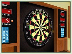 Darts screen shot